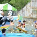 要出典 花フェスタ記念公園 じゃぶじゃぶ池