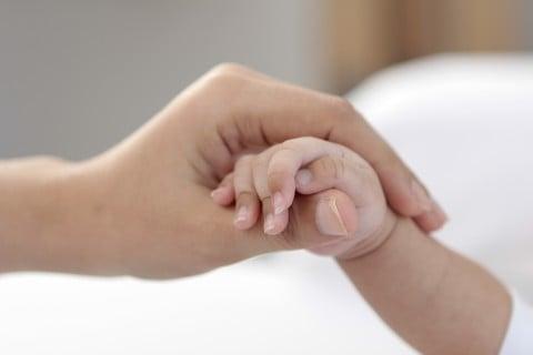 親子 手 指 握る
