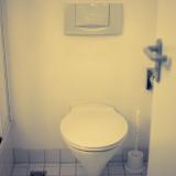 家 トイレ 便器