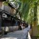 風景 石畳 京都 町並み