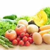 飲食 野菜 栄養 食材
