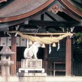 七五三 知立神社
