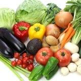 飲食 野菜 種類 食材