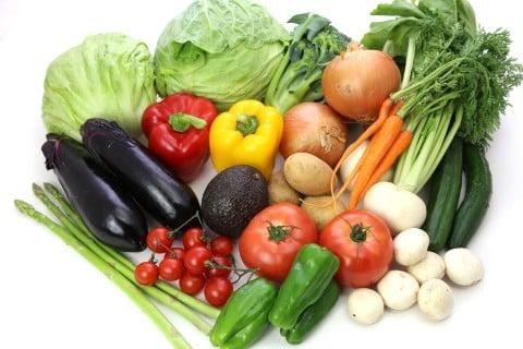 飲食 野菜 種類
