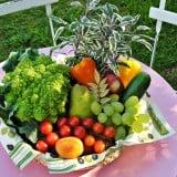 飲食 食材 野菜 果物