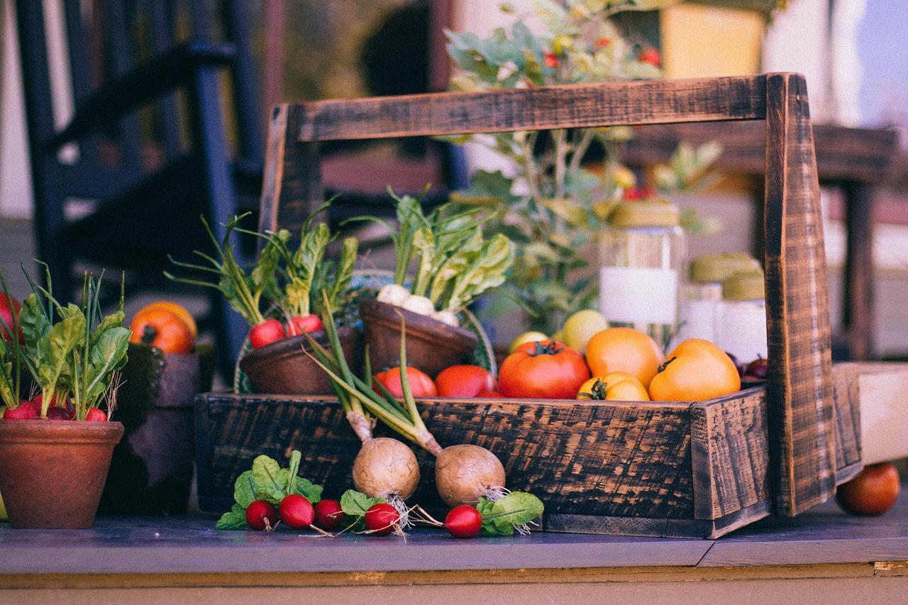 飲食 食べ物 野菜