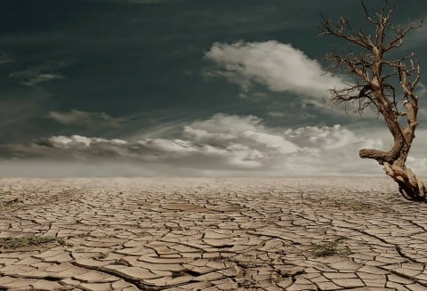 風景 砂漠 脱水