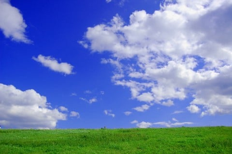 風景 青空 芝生
