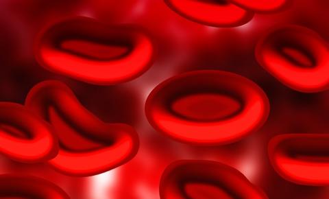 医療 血 鉄