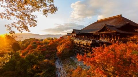 古都 京都 紅葉 清水寺