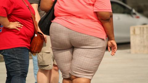 女性 太る ダイエット 健康