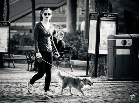 ウォーキング 女性 ペット