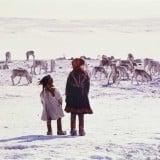 女の子5歳 女の子10歳 姉妹 鹿 寒い 雪