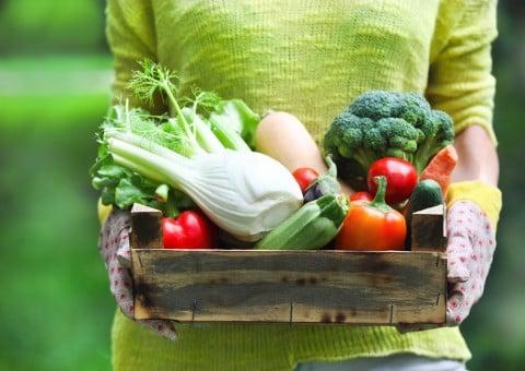 野菜 女性 料理 栄養