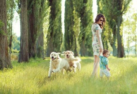 女性 親子 子供 男の子 おしゃれ 犬 草原