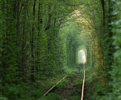 トンネル 道