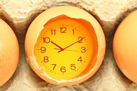 グッズ 時計 時間 卵
