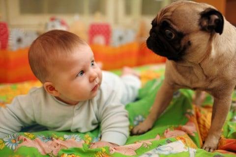 赤ちゃん びっくり