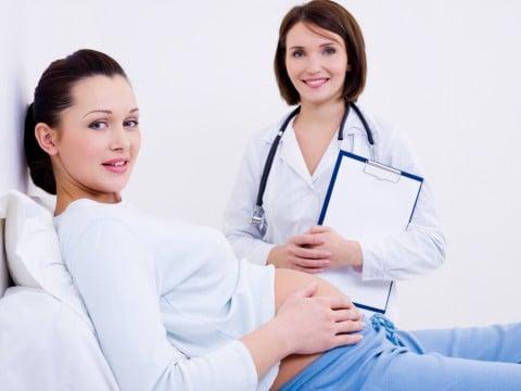 妊婦 医師 診察
