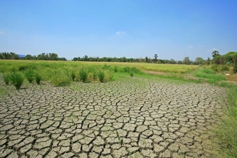 土 荒れる 劣化