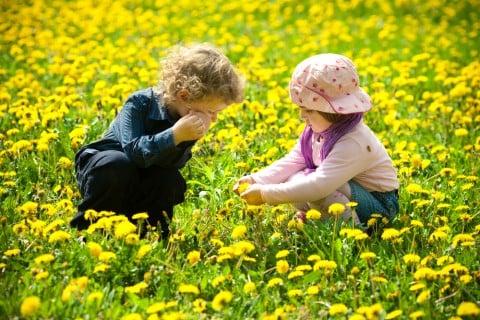 子ども 男の子 女の子 春 花