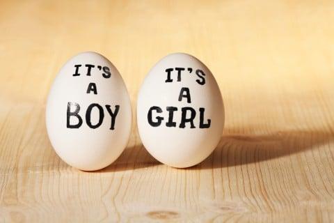 妊娠 確率 双子