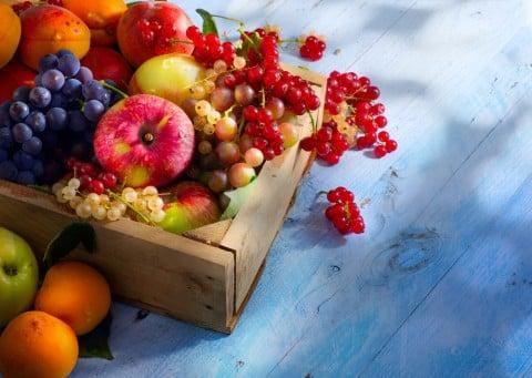 果物 秋 名前 フルーツ
