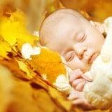 秋 赤ちゃん