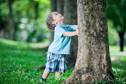 男の子 木 自然