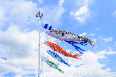 風景 端午の節句 鯉のぼり 空