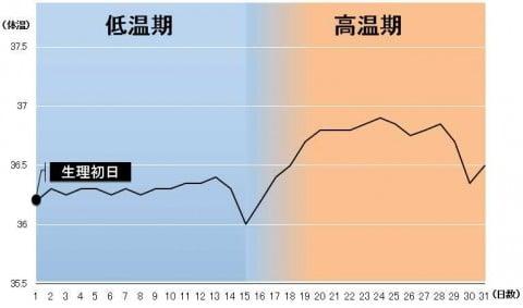 基礎体温 グラフ 高温期への移行に時間がかかる