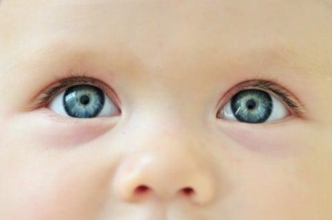 赤ちゃん 目 眼球