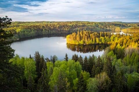 フィンランド 湖 森 風景