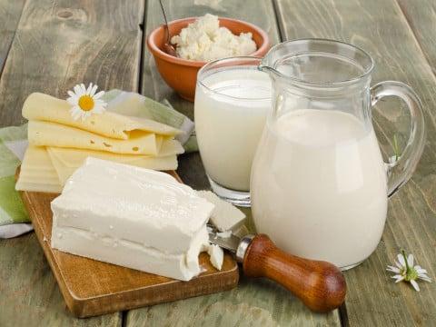 牛乳 チーズ 乳製品