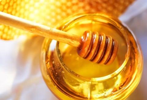はちみつ 蜂蜜 蜜