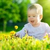 赤ちゃん 花 花粉 花畑 外 野外 外出 公園