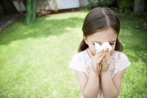 子供 風邪 夏 鼻