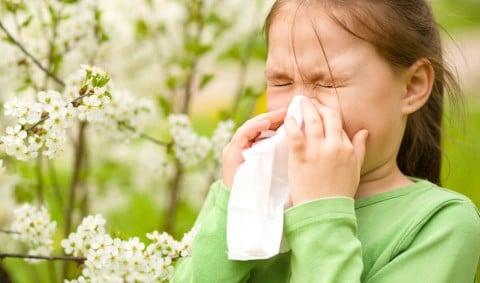 子供 鼻 鼻をかむ ティッシュ 鼻水 くしゃみ 風邪