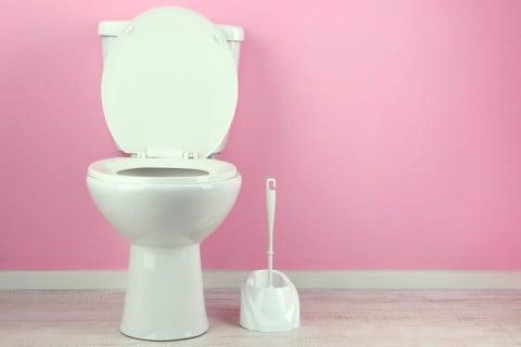トイレ 掃除 トレーニング