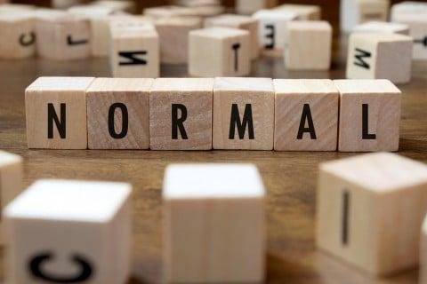 ノーマル 平均 普通 モノ 通常 一般