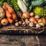 根菜 食材 野菜
