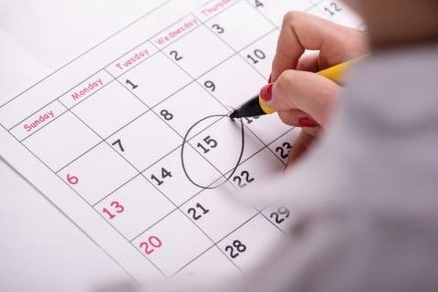チェック カレンダー 女性