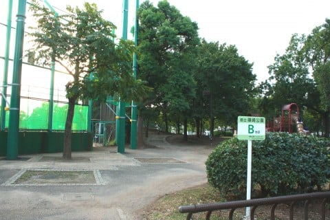 篠崎公園 B地区 野球場 どんぐり