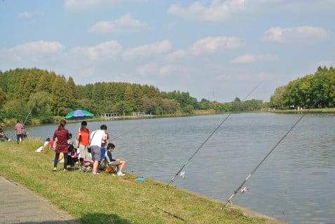 水元公園 釣り 子供