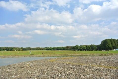 水元公園 水遊び 広場