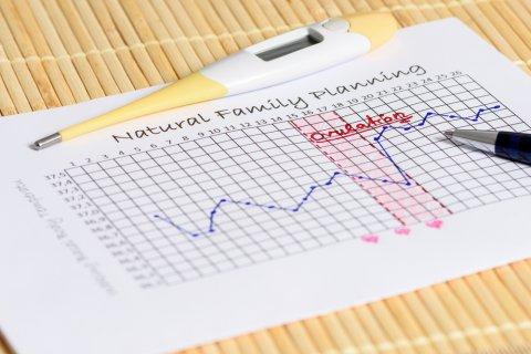 基礎体温 基礎体温計 グラフ