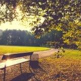 風景 場所 景色 ベンチ 公園