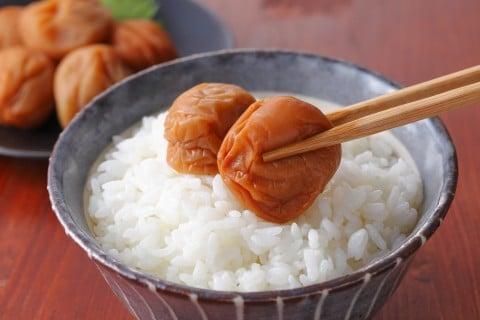 梅干し つわり ごはん 和食 おかず