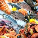 魚 魚介類 食べ物