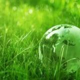 風景 緑 草 公園 球体